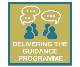 Delivering the guidance programme